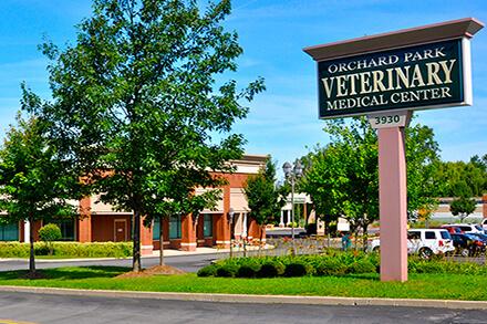 24-Hour Emergency Veterinarian   OPVMC Buffalo NY