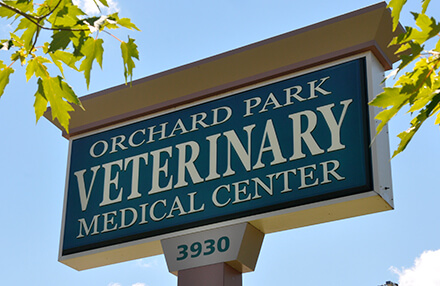 Orchard Park Veterinary