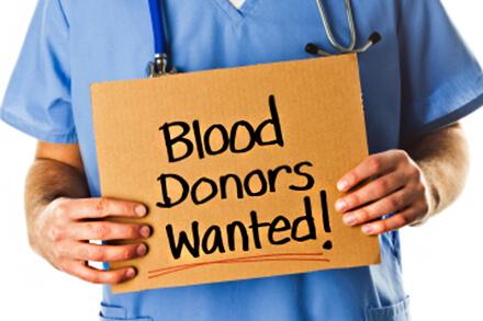 Buffalo Ny Pet Blood Bank Opvmc Buffalo Ny